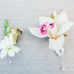 boutonniere-grand-bohemian-charleston-sc-lowcountry-wedding-kate-timbers-photography